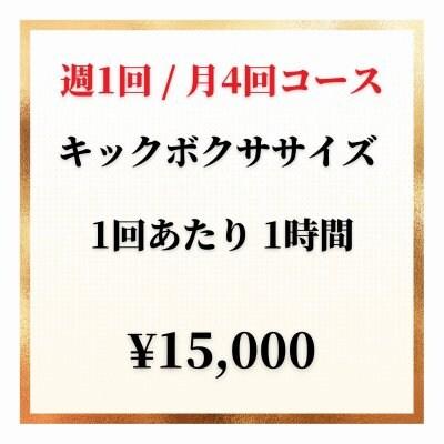 【週1回 / 月4回】キックボクササイズチケット