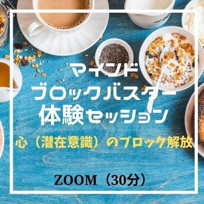 マインドブロックバスター 体験セッション(30分) ZOOM