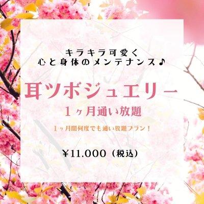 耳ツボジュエリー☆1ヶ月通い放題チケット
