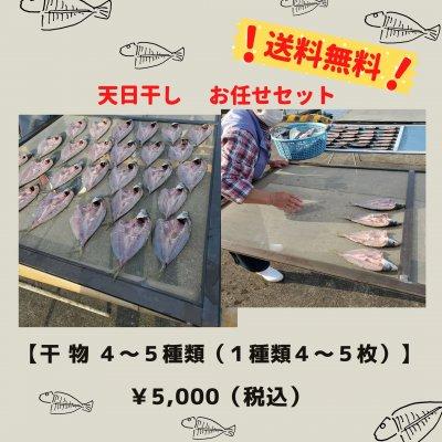 お魚じゅんちゃんのお任せ干物セット;送料無料