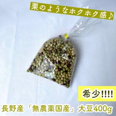 マルシェで大人気!長野産無農薬国産大豆(400g)