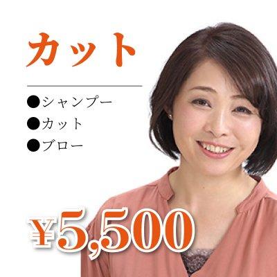 カット¥5500/シャンプー/カット/ブロー
