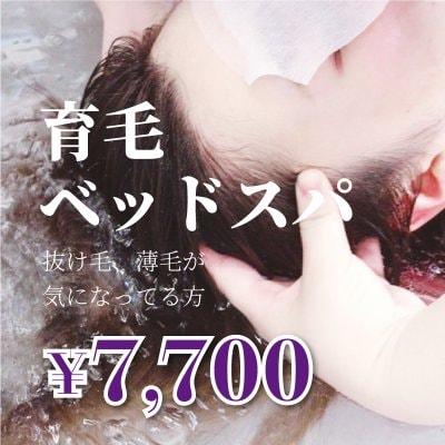 育毛ヘッドスパ¥7700/抜け毛、薄毛が気になってる方/血流を促し、頭皮環境を整え、毛周期を正常に戻す癒しの育毛ベッドスパ