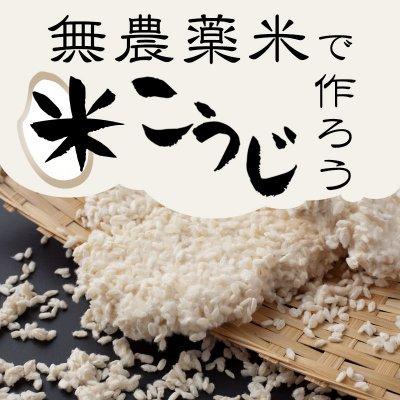 無農薬米で最高の米こうじを作ってみよう!