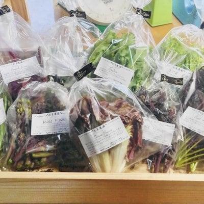 (送料無料)七草農園直送 6月の無農薬野菜セット
