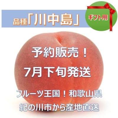 贈答用★予約販売★桃「川中島」和歌山県産 1.5キロ(3~5個)/初出店記念...
