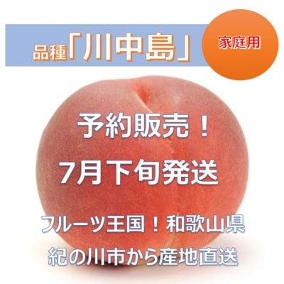 家庭用★予約販売★桃「川中島」和歌山県産 4キロ(11~13個)/初出店記念...