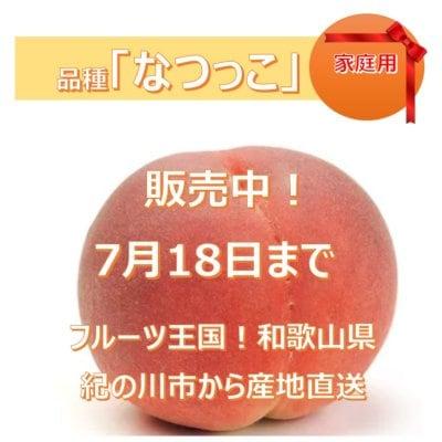 家庭用★販売中★桃「なつっこ」和歌山県産 4キロ(11~13個)/初出店記念...
