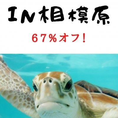 9/18(土)【相模原市開催】ソサイチ体験会