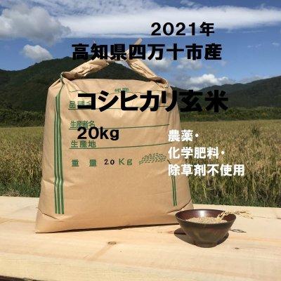 『情熱のふくどめ米』コシヒカリ オーガニック 【お得サイズ】【202...