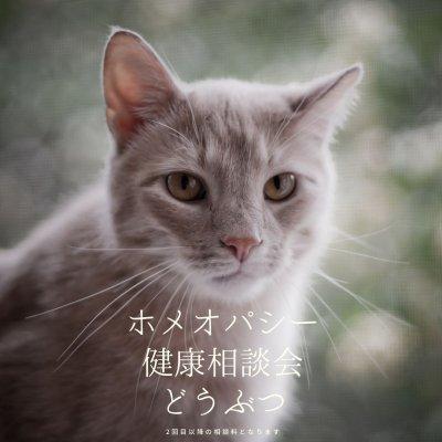 ホメオパシー健康相談【どうぶつ】