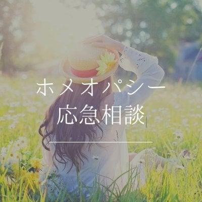 ホメオパシー健康相談【応急相談】
