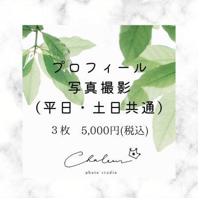 [シャルール]プロフィール写真【データ3枚】