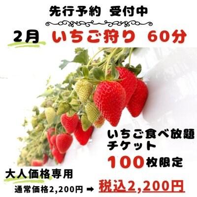 2月分 大人いちご狩り60分食べ放題チケット 期日予約は→ https://lin.ee/kXGECKUより