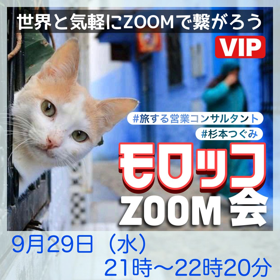 モロッコzoom会ZIP・9月29日(水)21時〜22時30分   過去にご参加頂いた方向けのVIP開催のイメージその1
