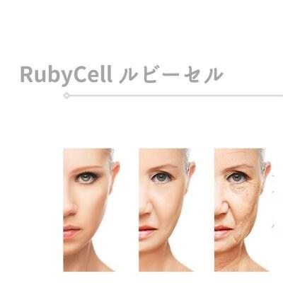 韓国|RubyCell|リバースエイジング