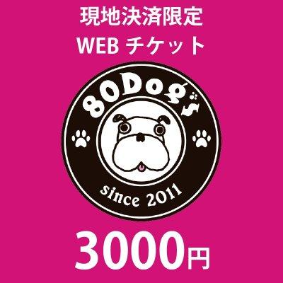 3,000円チケット【現地決済用】※支払い方法は、『現地払い』をご選択ください。