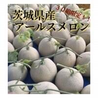 【今が旬!!】茨城県産アールスメロン