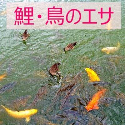 鯉・鳥のエサ 1袋