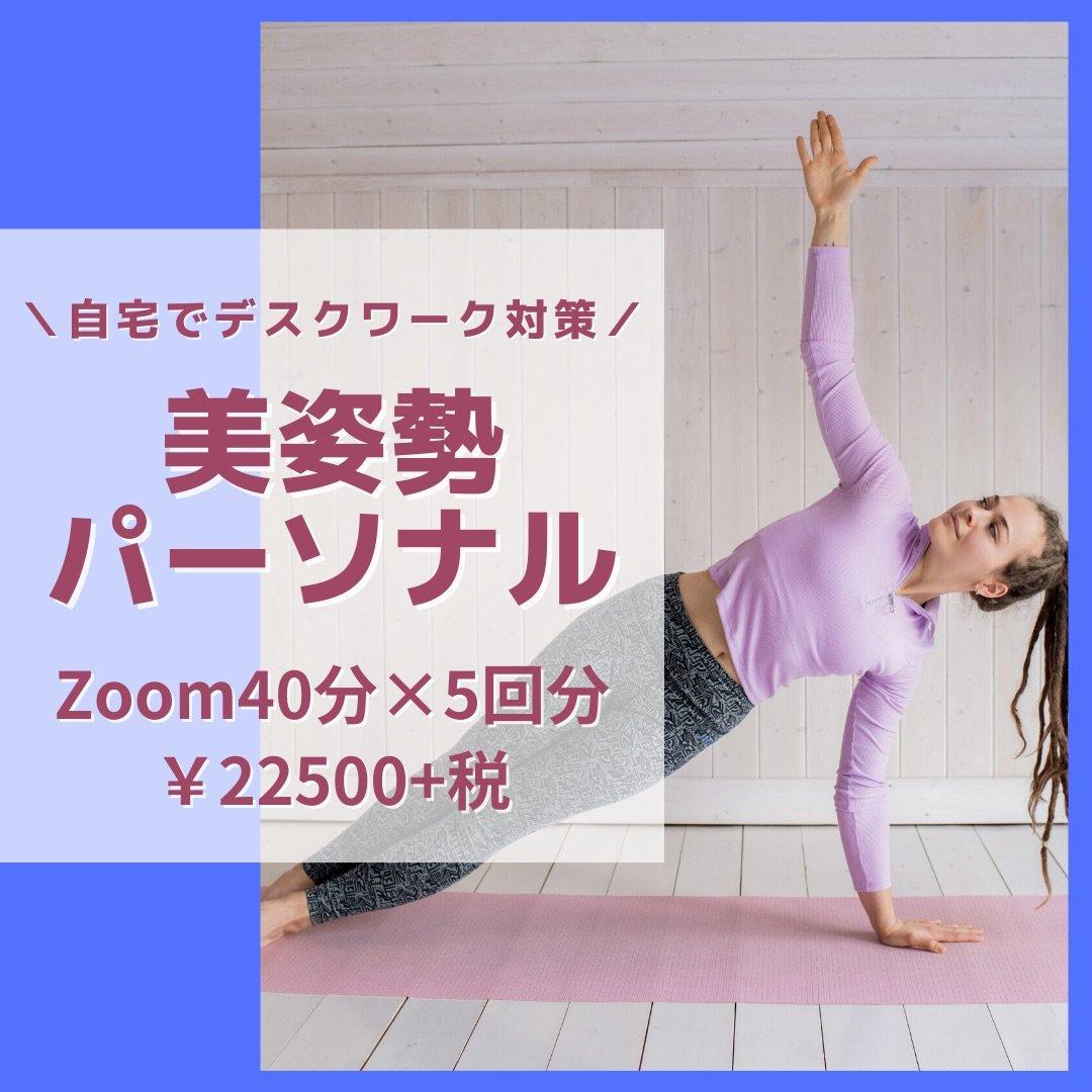 【女性限定】Zoom美姿勢パーソナル40分 5回チケットのイメージその1