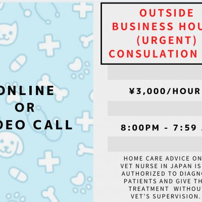 Outside Business Hours Consultation Fee