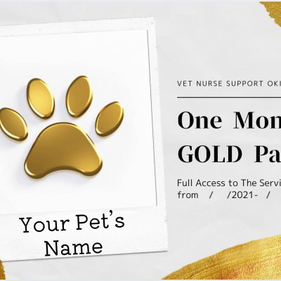 One Month GOLD Pass (All-Inclusive)