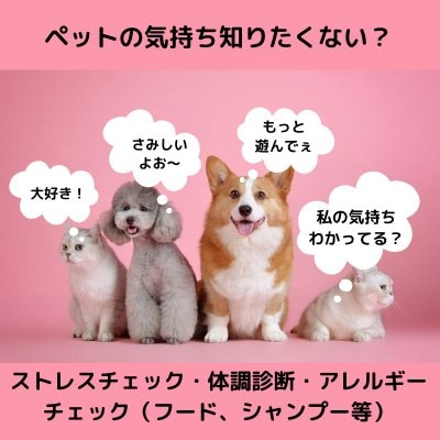 ペット体調診断/ストレスチェック/ペットの気持ち知りたくないですか?