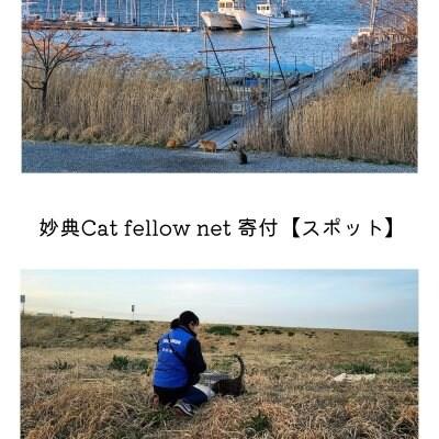 妙典Cat fellow net 寄付【定期】