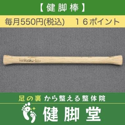 健脚棒レンタル【550円】【店頭契約用】