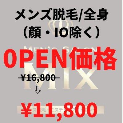 【OPEN価格】メンズ脱毛 全身(顔・IO除く)