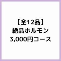 【全12品】絶品ホルモン3,000円コース