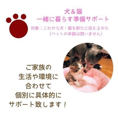 獣医さんによるペットと暮らす準備サポート|犬&猫|オンライン