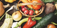 オーガニックひつき屋野菜・果物