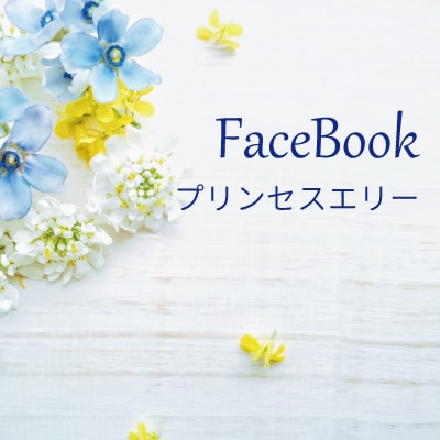Facebookプリンセスエリー