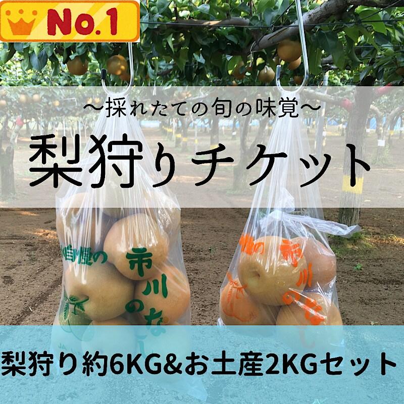 梨狩りチケット,梨狩り袋6kg