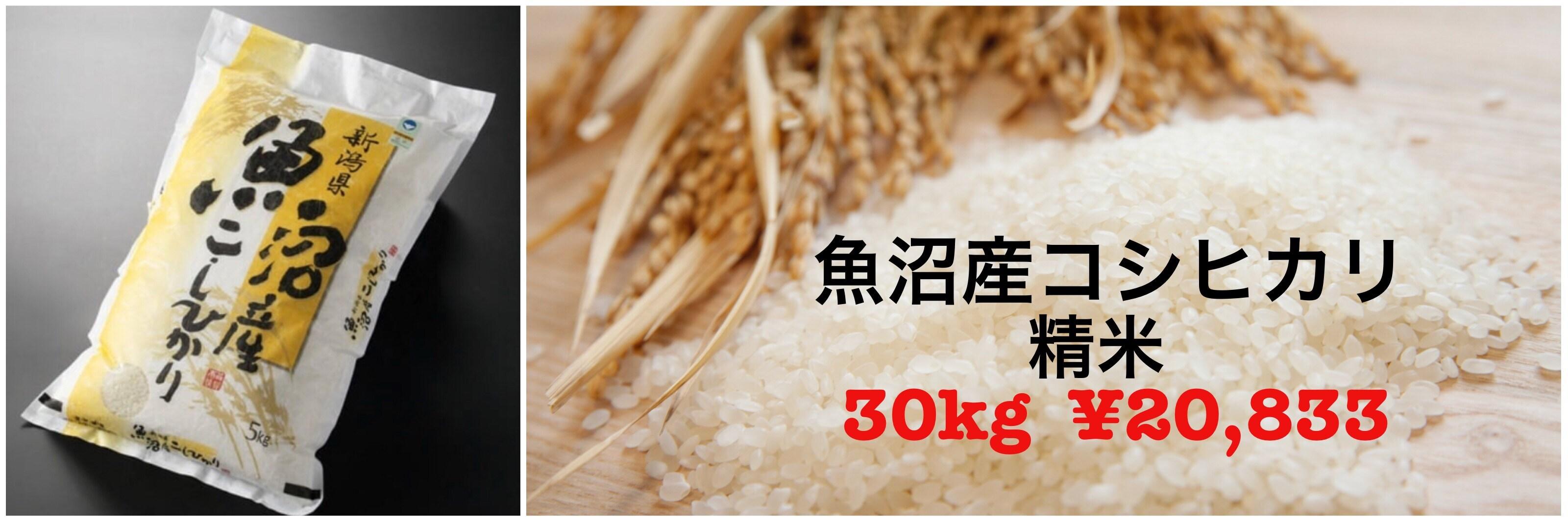 精米30キロ