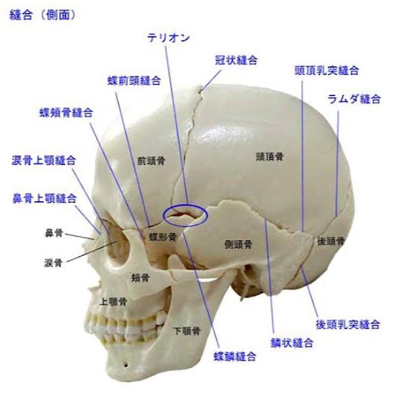 頭蓋骨矯正整体院輝