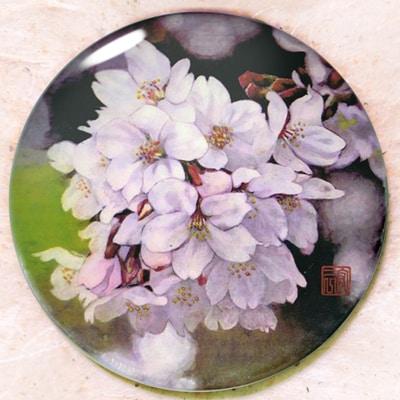 「砧公園の桜」手鏡1