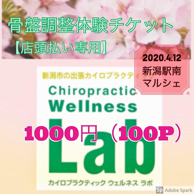 骨盤調整体験チケット1000円(100pt付)