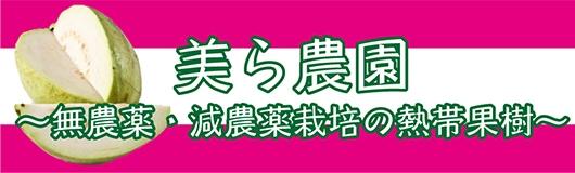 美ら農園 〜無農薬・減農薬栽培の熱帯果樹〜