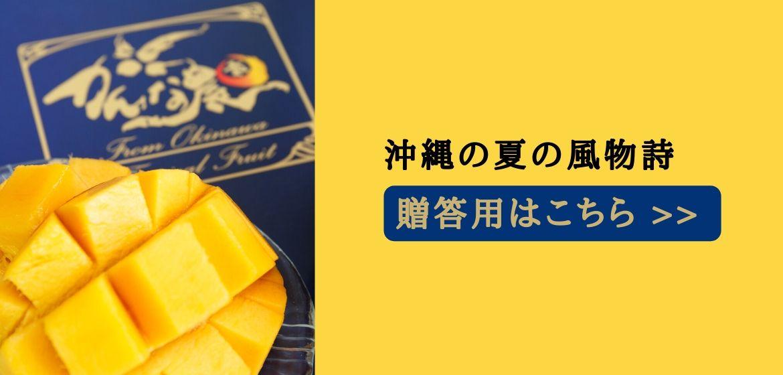 沖縄マンゴーのフルーツ通販のかんな農園糸満産お中元贈答プレゼント