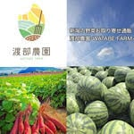 新潟の野菜お取り寄せ通販|渡部農園−WATABE FARM−