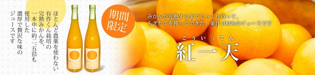 皮ごと食べられるみかんうきこ農園熊本ストレートジュースの通販
