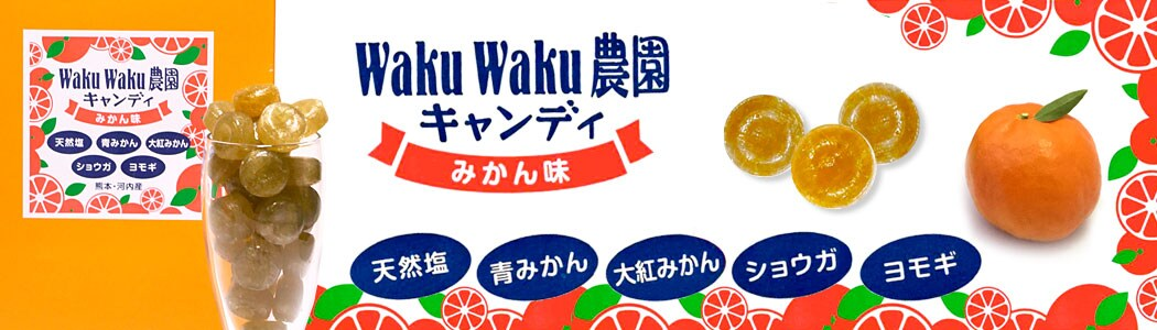 皮ごと食べられるみかんうきこ農園熊本キャンディーの通販