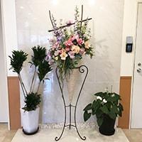 造花 レンタル 福祉施設