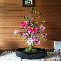 造花 レンタル 家庭
