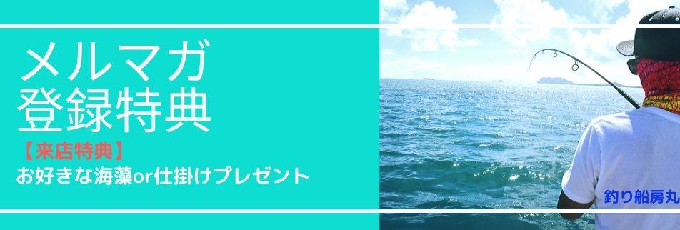 釣り船房丸/メルマガ登録特典