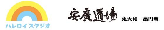 ハレロイスタジオ メリラTシャツ 高円寺