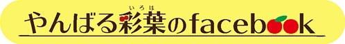 やんばる彩葉のfacebook|アセロラ コスメ 沖縄 美白 美肌