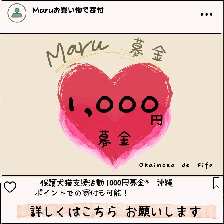 沖縄の保護犬猫支援活動1000募金ウェブチケット。ポイントでの寄付も可能。